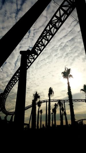Rollercoster Saklimedia Sunshine Palm Trees Sky_collection Life's A Rollercoaster✨ Urban Rollercoaster Rollercoaster In The Sun Enjoying Life Life The City Light Adventures In The City