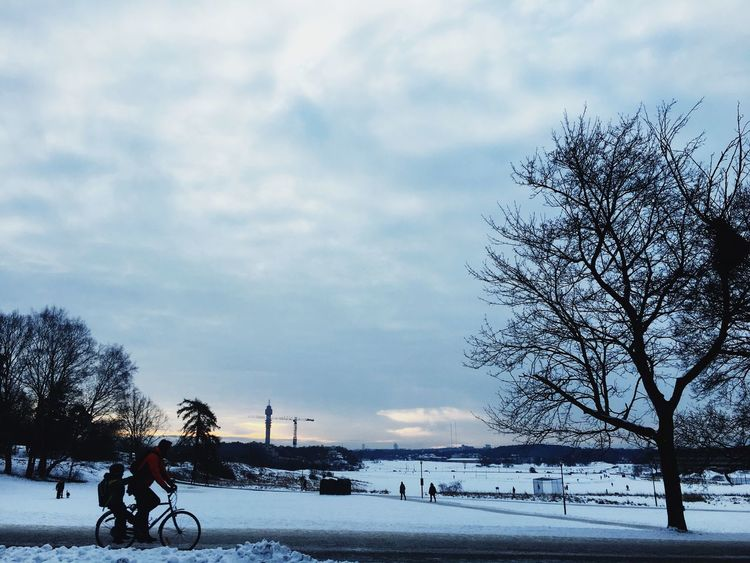 Bicycle Cloud - Sky Sky Transportation Cycling Mode Of Transport Winter Cold Temperature Land Vehicle Weather Riding Outdoors Tree Snow Real People Nature Bare Tree Men Day One Person