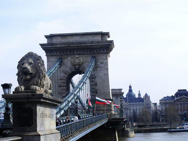 Budapest Hungary Lánchíd Bridge Showcase: November Eyeemhungary
