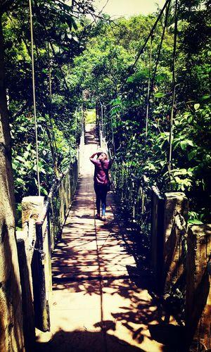 Gotta go my own way!... a shot from my friend. Crossing The Bridge Chosen Paths Traveling