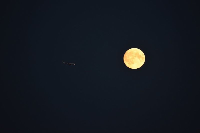 Flying to the Moon 🌝 Night Photography Plane Flying To The Moon Night Space Sky Moon Astronomy Scenics - Nature Beauty In Nature Tranquil Scene Planetary Moon No People Copy Space Tranquility Full Moon Nature Geometric Shape Low Angle View Space Exploration Shape Moon Surface Idyllic