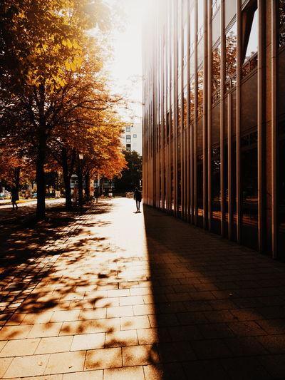 Autumn. Huawei
