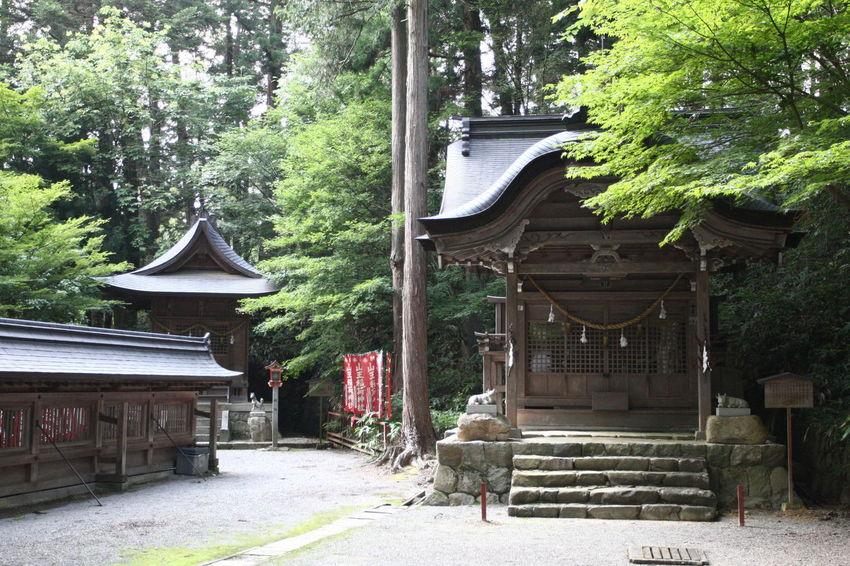 高山市の日吉神社 Architecture Jinja 飛騨高山 飛騨 岐阜県 Japan Japan Photography Japan Architecture Architecture Photography Wooden Architecture Shinto Shinto Shrine Shrine Of Japan Shrines And Temples