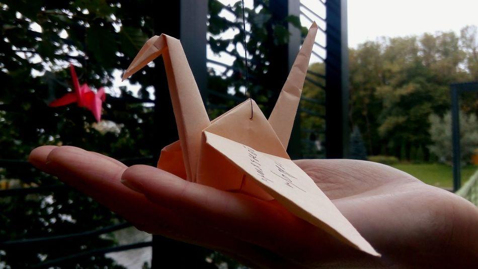 Best EyeEm Shot The Week On EyeEm Human Body Part Human Hand Close-up Paperbirds Be. Ready. Go Higher