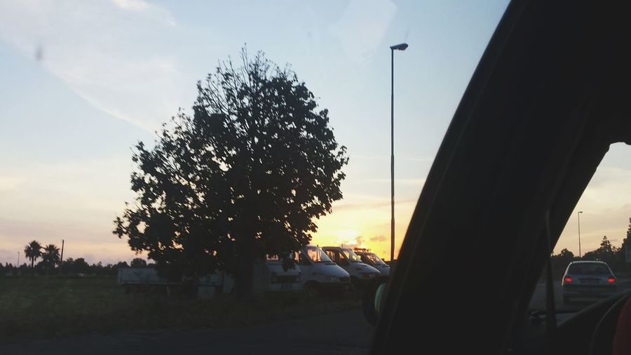 ..... Sunset_collection Sunset Tree Road Roadtrip Streetphotography Street Sun Speechless Light And Shadow Light WOW EyeEm Nature Lover Nature Nature Photography Porcodio Madonnaporca