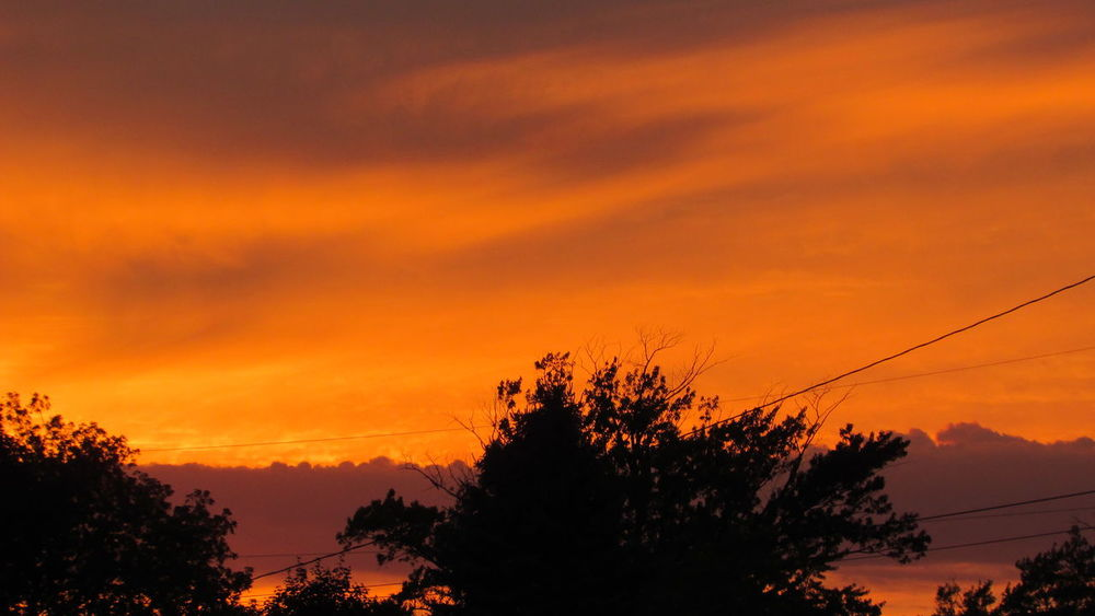 Sunset_collection Bright Orange Last Night Cadillac Sky Pure Michigan