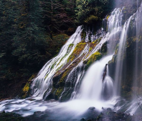 Adventure Hiking Scenics - Nature Waterfall Beauty In Nature Water Motion Long Exposure Forest Environment Nature Power In Nature