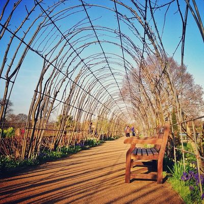 Beautiful #Kensington #gardens ???????#alan_in_london #gf_uk #gang_family #igers_london #insta_london #london_only #thisislondon #ic_cities #ic_cities_london #ig_england #love_london #o2trains #gi_uk #ig_london #touristlondon Touristlondon Gi_uk Igers_london Ig_england Gardens Love_london Gang_family Ic_cities_london Extremedepth Ig_london Kensington London_only Ic_cities Gf_uk Alan_in_london Insta_london O2trains Thisislondon