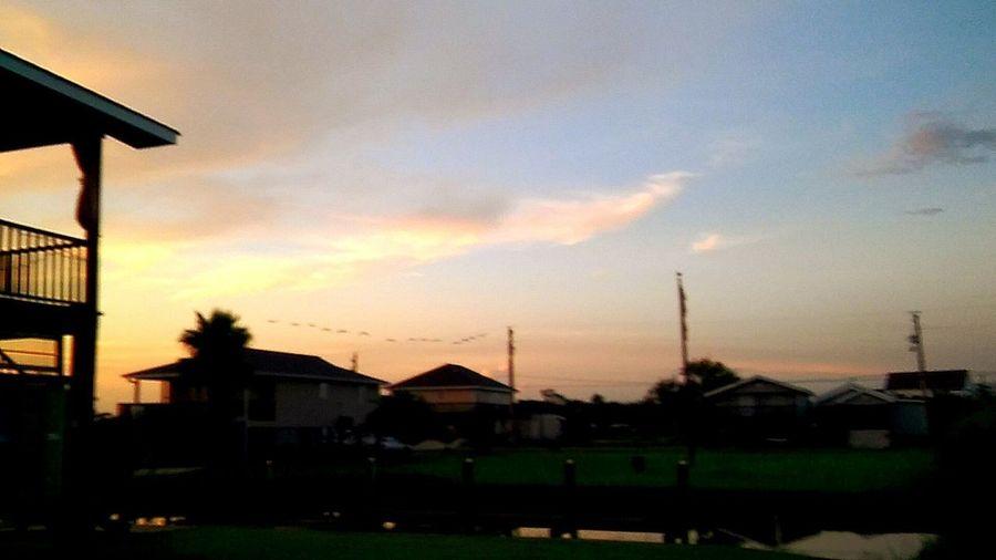Sunset No