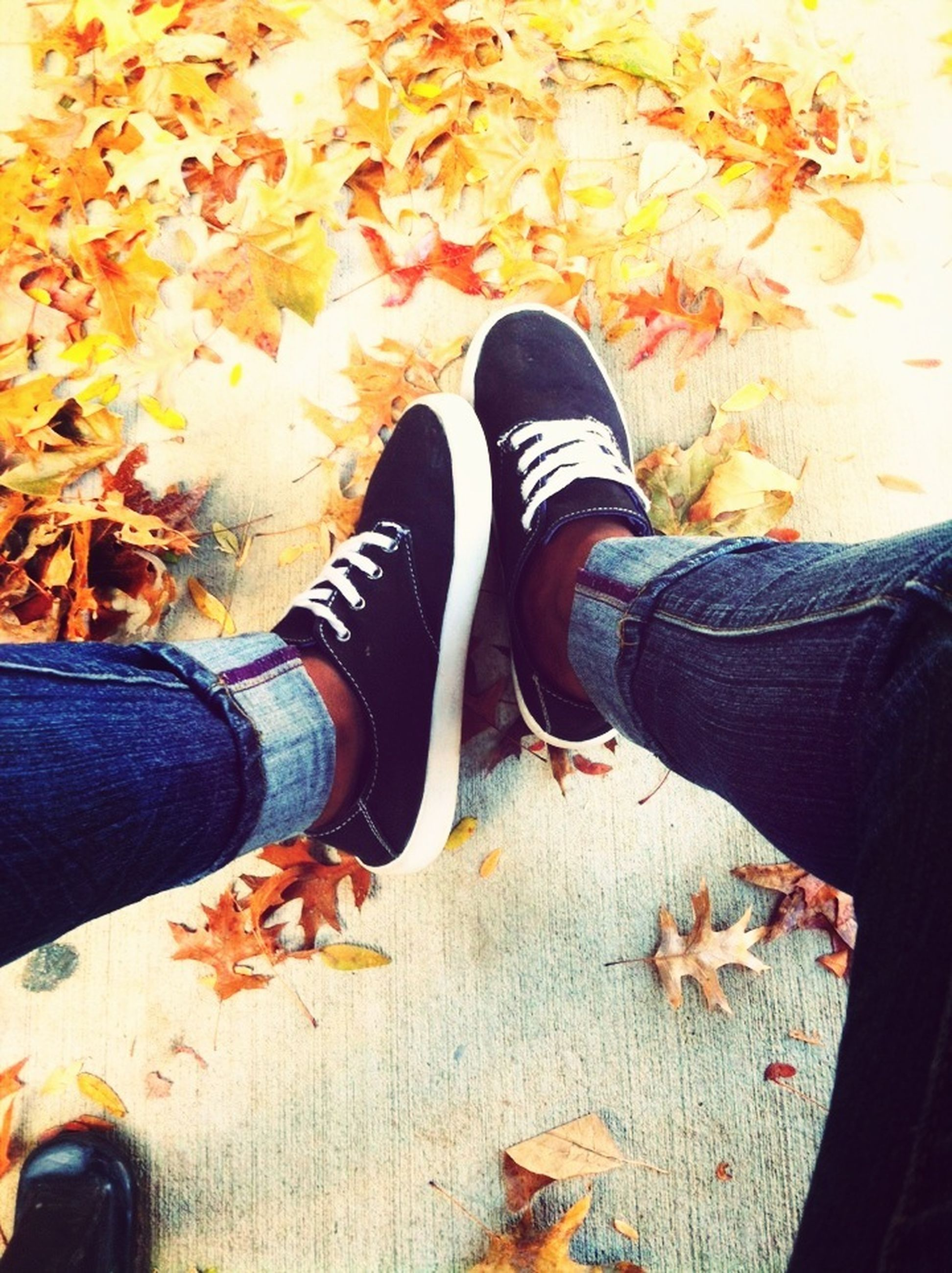 low section, shoe, person, jeans, footwear, personal perspective, lifestyles, standing, human foot, leisure activity, men, high angle view, canvas shoe, casual clothing, autumn, day, outdoors