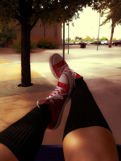 Chola gone shopping. Chola Relaxation Tree Person Personal Perspective Close-up Outdoors Red Photography Beauty In Ordinary Things Shooting Photos Tucson Az Cellphone Photography Mypassion Simplethings Summer MyPhotography Converse Sneaker Shoes Shoppingcart Going For A Ride  Goofing Off Atthemall Quality Time Out Of The Box