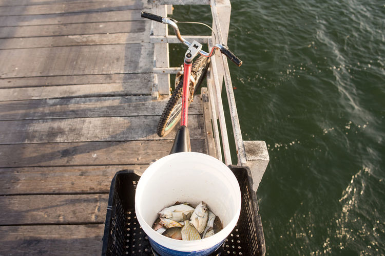 High angle view of fish in bucket on pier by sea
