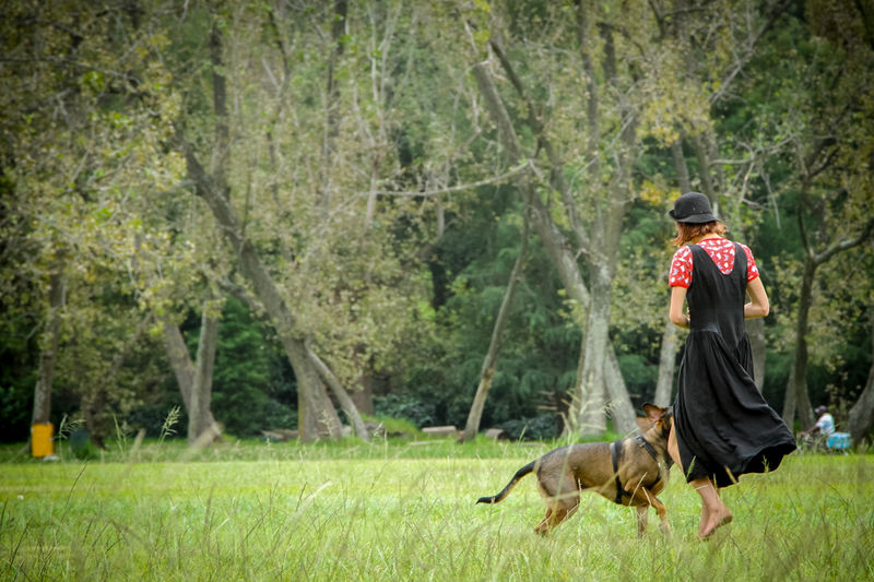 A woman taking her dog for a walk in the local park with the trees in the background. Domestic Animals Dog Pet Walking Dog Walking Woman Black Dress Trees Park Grass Field Playing Green Color Copy Space Nature Outdoors