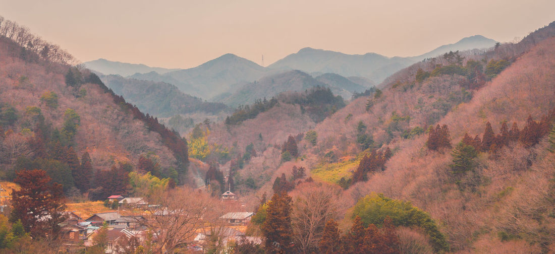 Road trip to Mount Fuji. February 2018 #Japantravels Mountain Scenics - Nature Beauty In Nature Mountain Range Tree Plant Tranquil Scene Tranquility Landscape Sky Nature Environment Non-urban Scene No People Idyllic Day Outdoors High Angle View TOWNSCAPE Japan Japan Travel Countryside Nikon Autumn Winter My Best Photo