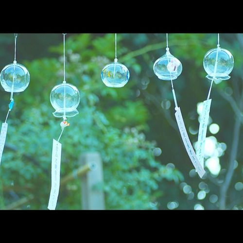 Japan EyeEm Best Shots Tommy@collection OpenEdit 奈良 風鈴 おふさ観音 Wind Windchimes Nara