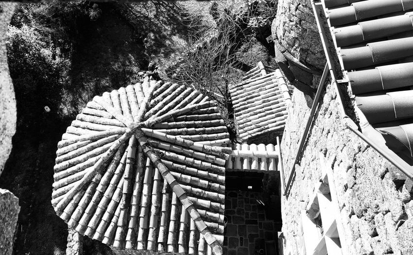 Black And White Collection  Rooftop Roof Bnw_life Bnw_captures No People Architecture Low Angle View Built Structure Day Pattern Outdoors Roof