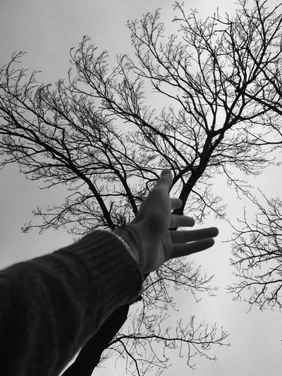 Hold my hand and don't ever let me go... Holdmyhand Dontlookback Trees Love