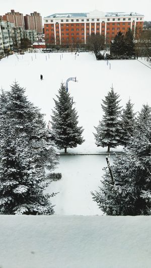 Snowing Outdoors Snow No People Sky first eyeem photo