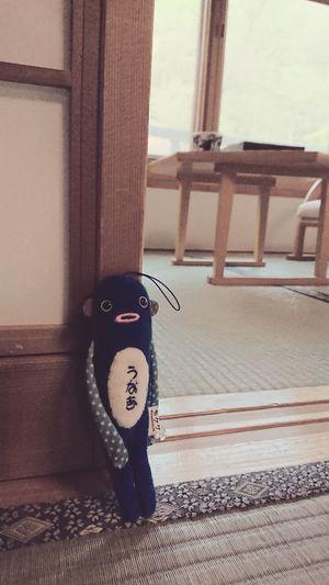 モケケと温泉旅館(^ω^) 旅館 ぬいぐるみ モケケ うなぎ Eel Indoor Japanese-style Room No People Traditional Japanese Inn Cuddly Toys