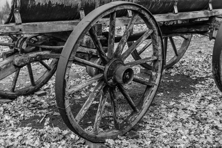 wheel Wheel Transportation Horse Cart Mode Of Transportation Field Damaged Horse Old Land Vehicle Wood - Material Outdoors No People Day Abandoned EyeEm Black&white! Eyeem Black And White