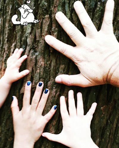 Human Hand Sao Paulo - Brazil Domingo🍀🍃 Mãos! árvores, Natureza, Paisagens Naturais, Primavera