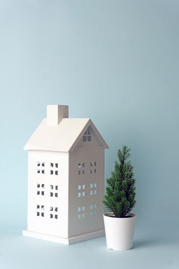 Potted plant against building