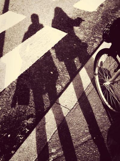 Light And Shadow Autumn Friend Eye Em Best Shots