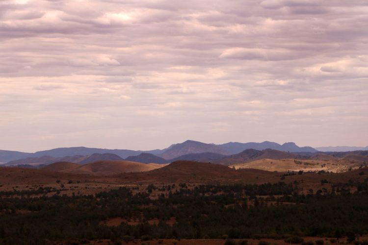 Storm clouds gather over the arid desert landscape of the Flinders Ranges, South Australia Flinders Ranges South Australia Storm Clouds Gathering Travel Photography Arid Climate Arid Landscape Beauty In Nature Day Landscape Moody Weather Mountain Mountain Range Nature No People Outback Australia Outdoors Overcast Sky Range Scenery Scenics Sky Tourist Destination Travel Destination Vegetation