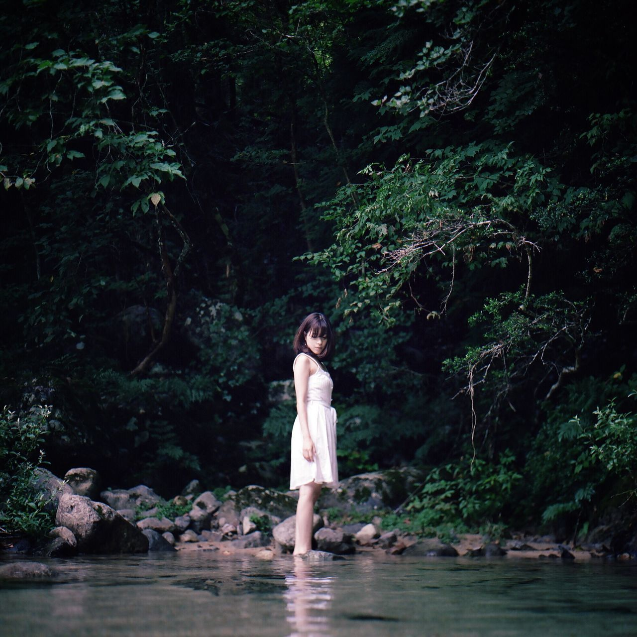 one person, real people, water, full length, tree, standing, young adult, ankle deep in water, front view, outdoors, nature, waterfront, river, young women, leisure activity, forest, beautiful woman, day, plant, adult, people, adults only