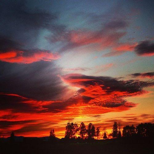 Stunning Sunset over the mountains! Oviksfjällen Jamtland Sweden Skyonfire