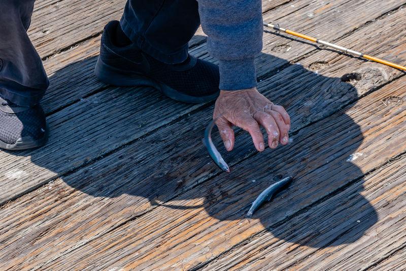 Low section of man by dead fish on boardwalk