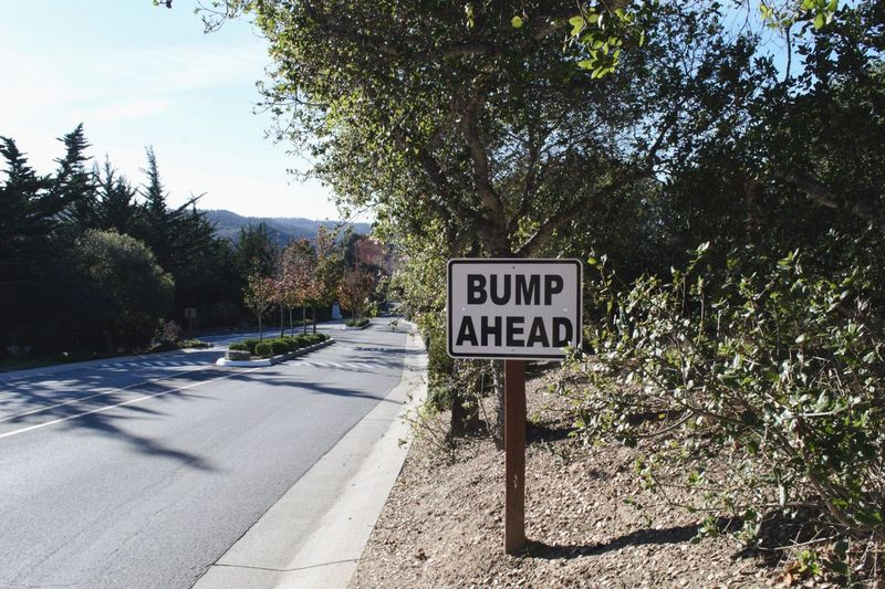 Life Obstacles First Pregnancy New Pregnancy Baby Bump Slow Down Speed Bump Bump Ahead Text Sign Communication Western Script Plant Road Tree Nature Information Sign Road Sign Day Sunlight No People