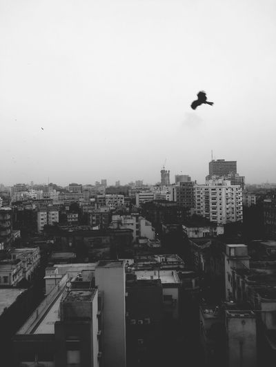 Blackandwhite My Smartphone Life Samsung Freedom Cityscapes Escape Heights Wings fly and never settle for a cramp, genocide of urban leisure and resurrected nomad