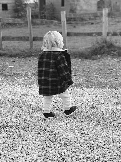 Small Stroll