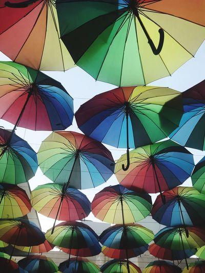 Umbrellas Full