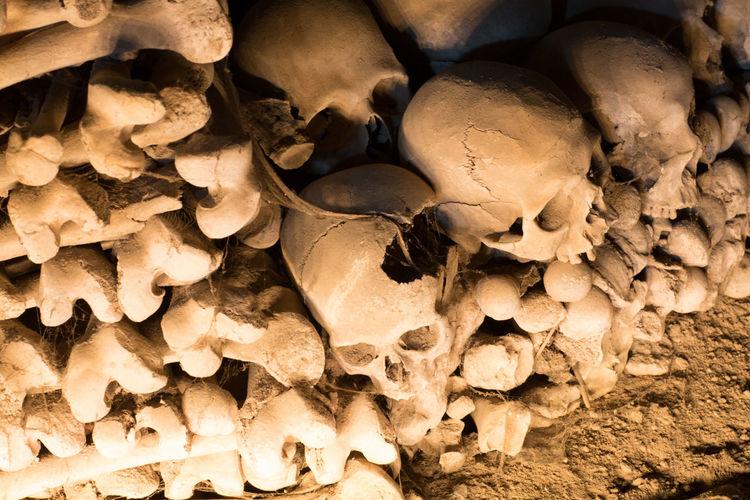 Full Frame Shot Of Human Skulls