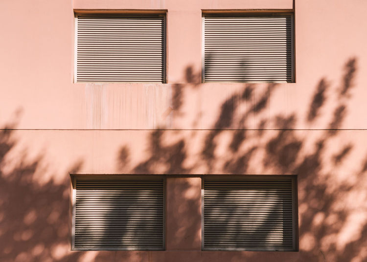 .. 49x365 .. . Building Exterior Built Structure Architecture Shadow Sunlight Building Window Nature No People Day Wall - Building Feature Shutter Outdoors Residential District Blinds House City Tree Pattern Plant Light And Shadow Lisbon Absence