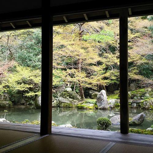 蓮華寺。4/4 月に一度は来たくなる。 先月より新緑が増えたかな? 蓮華寺 寺 京都 Kyoto 春 月一蓮華寺