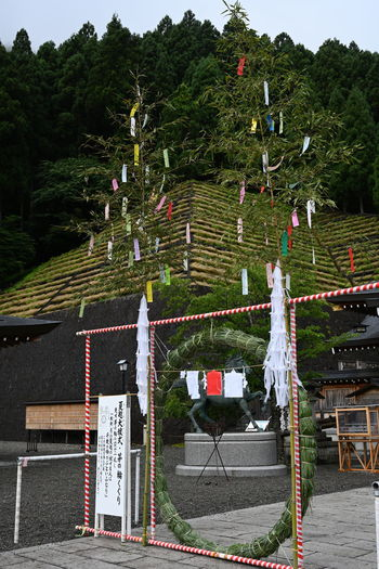 Niukawakami