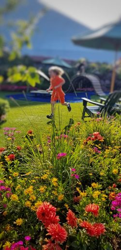 The exuberant joy of a warm sunny day... A Moment In Time capturing motion Beauty In Nature Flowers, Nature And Beauty Childhood Children At Play Children Playing The Beauty Of Summer Time! Flower Summer Exploratorium Focus On The Story