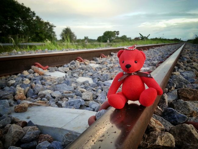 Bear Red Bear Sad & Lonely Feeling Lonely