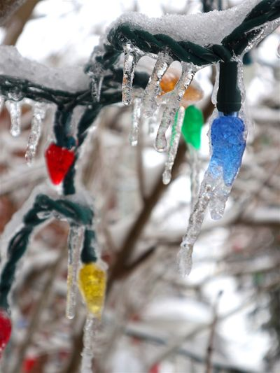 Christmas Lights Close-up Colors Day Freezing Glass Ice Ice Melting Ice Storm Iced Leave Icicle No People Outdoors Roof Ice Roof Icicles Snow Winter