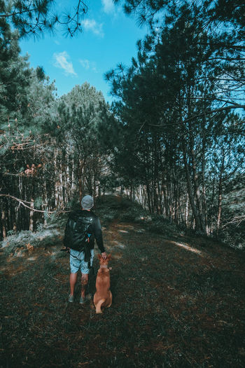 Rear View Of Man With Dog Standing In Forest