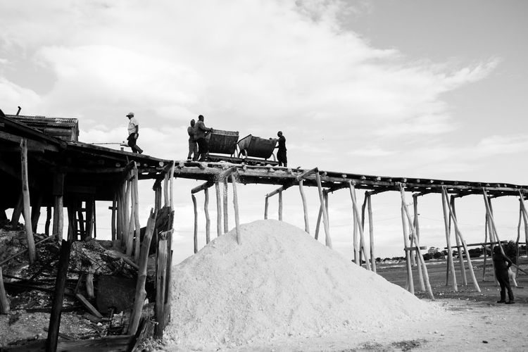 Bani Dominican Republic Railroad Track Architecture Day Mammal Manual Worker Men Occupation One Person Outdoors People Playa Salinas Produccion Sal Real People Salt Production Sky Structure Working