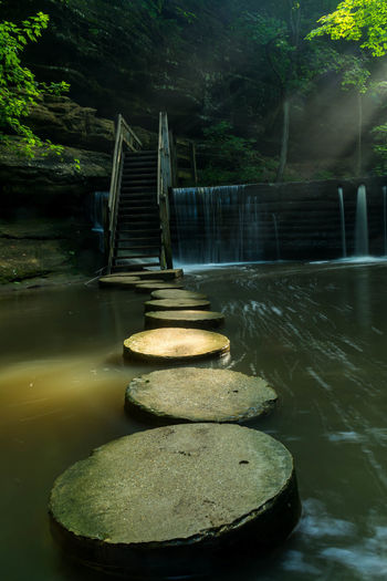 Stepping stones in lake against trees at forest