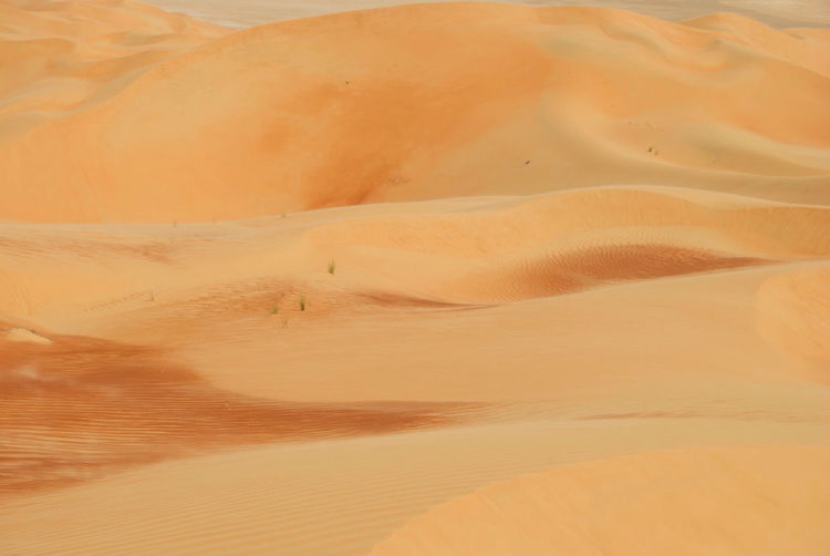 Full frame shot of sand dune