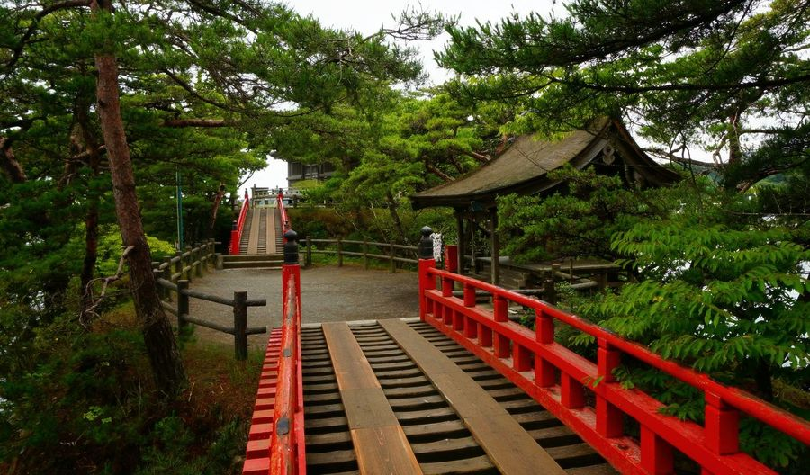 Boardwalk Leading Towards Shrine