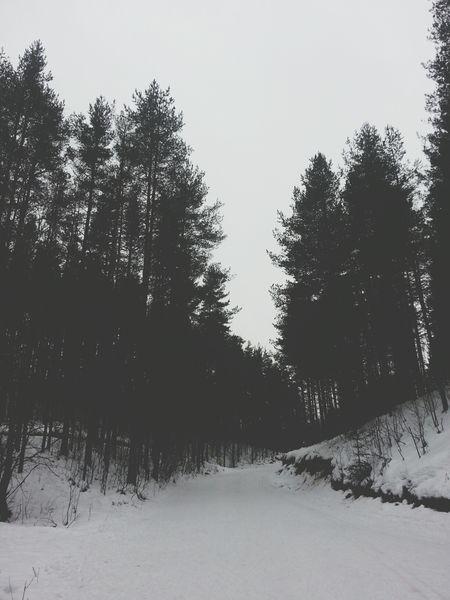 Connected With Nature Winter Siberia Deepfreeze EyeEmRussianTeam