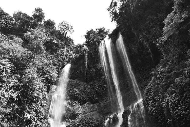 EyeEm Waterfalls EyeEm Nature Lover Welcome To The Jungle Black And White EyeEm Indonesia Landscape Sekumpul  Beautiful Nature The Week Of Eyeem Wonderful View