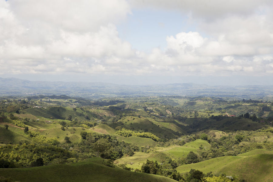 View from the Filandia lookout on the outskirts of Filandia, Quindio in Colombia's Coffee Region Andes Colombia Beauty In Nature Cloud - Sky Coffee Region Day Field Landscape Mountain Nature No People Outdoors Scenics Sky Tranquil Scene Tranquility Tree